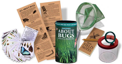 Flights of Fancy All About Bugs kit