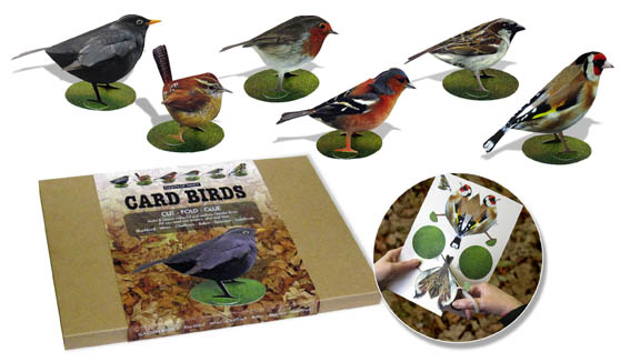 Flights of Fancy Popular Garden Birds