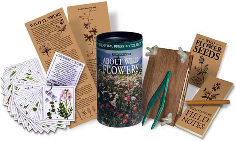 Flights of Fancy About Wildflowers Kit