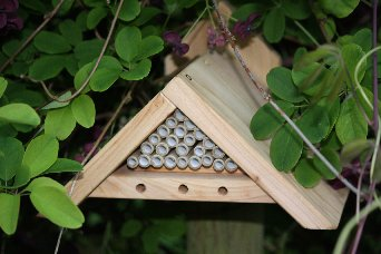 Mason / Orchard Bee Box