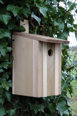 Wildlife World Cedar Eco Bird box