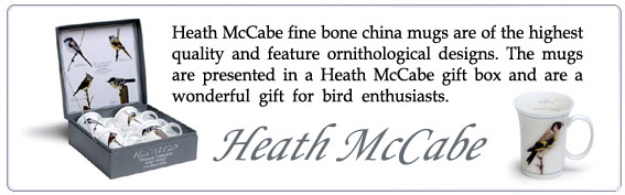 Heath McCabe is a specialist in the design and supply of china and ceramic wares