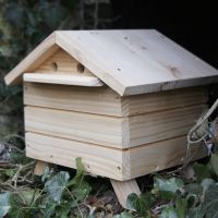 Bee Habitats for Bumble Bees - BPL Beepol Lodge with Live Bees